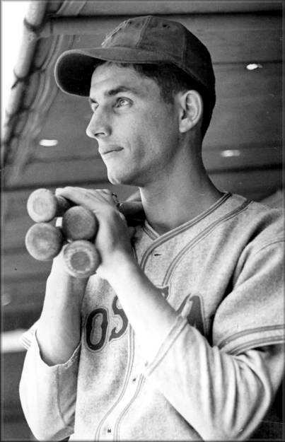 vince dimaggio society for american baseball research